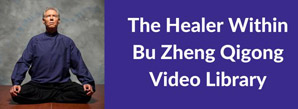 Healer Within Video